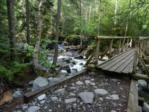 Bridge on the way to Colden