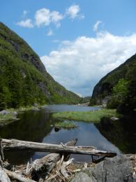 A view from the end of Avalanche Lake