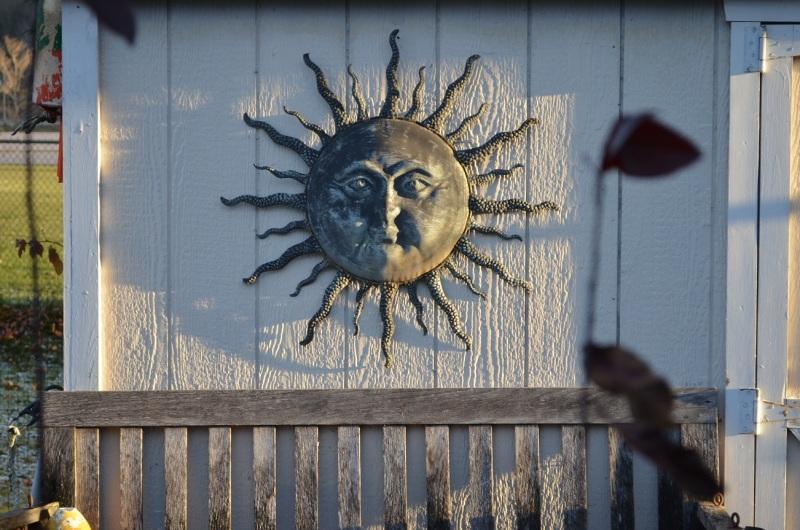 sun shed