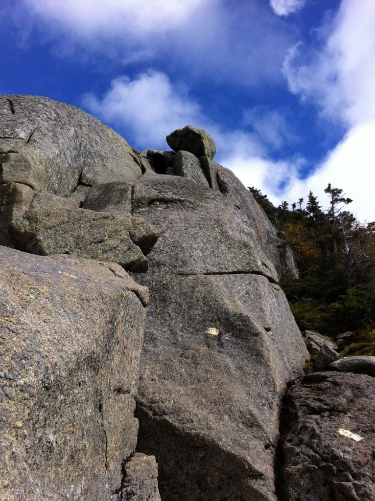 Part of the summit trail to Saddleback in the ADK. Very happy we went up this section instead of down!