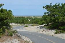 bike path dunes
