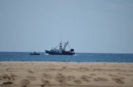 a local fishing/lobster boat