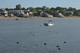 ptown harbor
