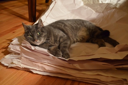 After some serious climbing of the box fortress the movers left us, she helped hold down some packing paper.