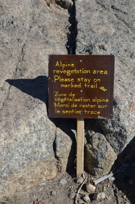 14 alpine sign