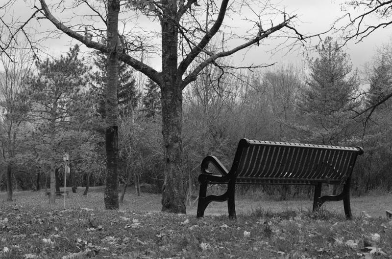 bench BW