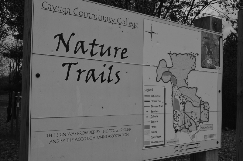 nature trail sign BW