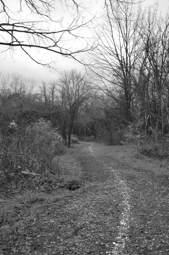 running path BW