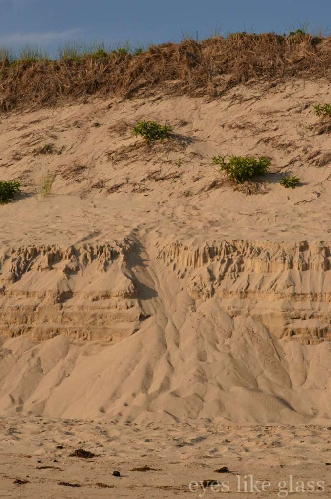 CC2015 sand dune